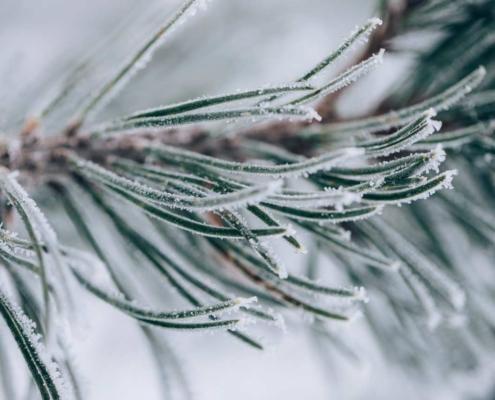 Idyllischer Winter in Lech